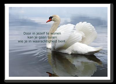 Tekst: Marieke de Vrij | Fotografie Johanna Koelman